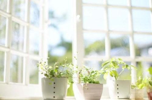 Indoor Air Quality Improvement
