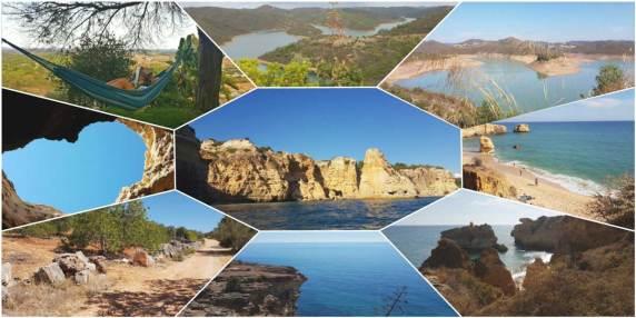 collage-natuur