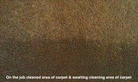How to choose a Carpet Cleaner | Carpet Cleaning St George ...