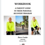 Workbook After-the-Shock