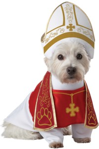 Holy Hound Dog Halloween Pet Costume | eBay