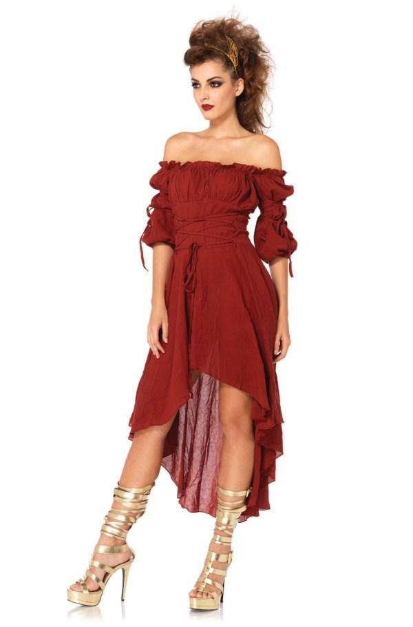 Medieval Renaissance Peasant Dress Adult Costume
