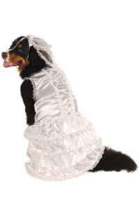 Brand New Wedding Bride Big Dog Pet Dog Costume | eBay