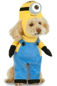 Brand New Minion Stuart Pet Costume | eBay