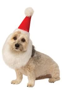 Santa Hat With Beard Pet Costume - PureCostumes.com
