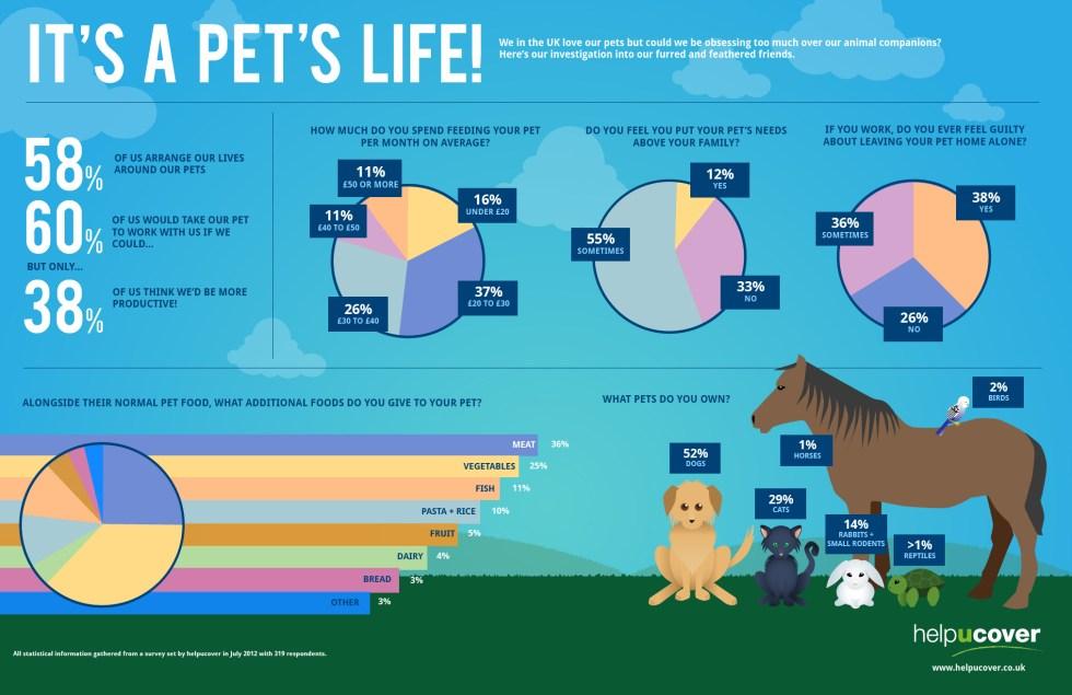 It's a Pet's Life!