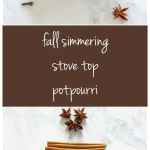 Fall Simmering Stove Top Potpourri