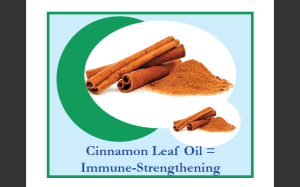 Cinnamon Leaf Extract in Oil Pulling