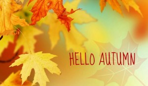 10 Steps to Autumn Wellness