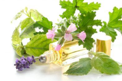 aromatherapie opleiding