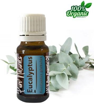 Eucalyptus essentiële olie - organic - biologisch - pure naturals