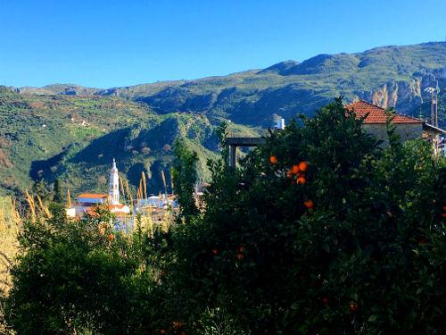 Topolia Gorge mountain village orange trees