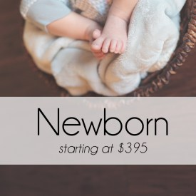 Newborn Portrait Photography Sessions start at $395