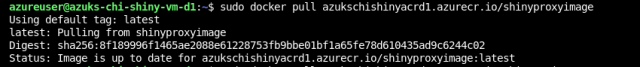 Docker pulls the image from Azure Container Registry - Deploy ShinyApps with Azure and Docker