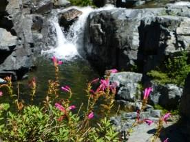 Passe Creek falls