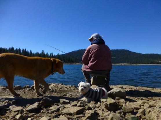 fishing at jackson meadows