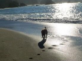 Ben at Wrights Beach