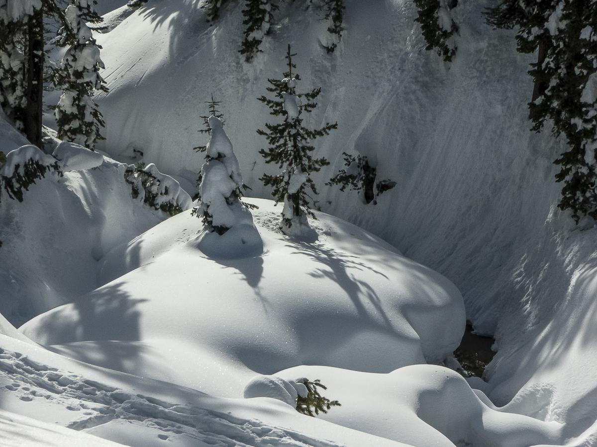 Sierra Snow Shoe Trip