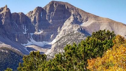 Great Basin wheeler peak