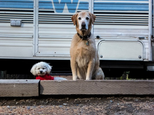 B and C camping