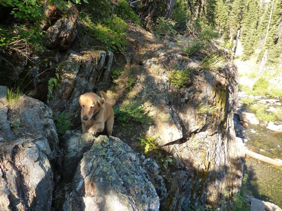 No problem with this narrow trail and these heights