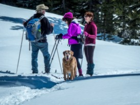 SnowShoe with friends