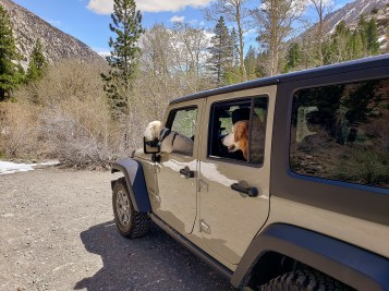 Exploring Eastern slope Sierra