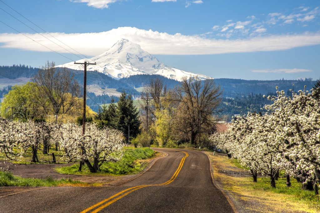 A Trip to Mount Hood in Oregon