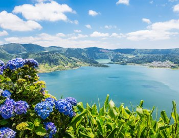 The Azores Exposed