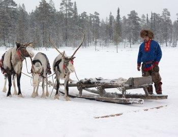 Exploring Lapland in Finland
