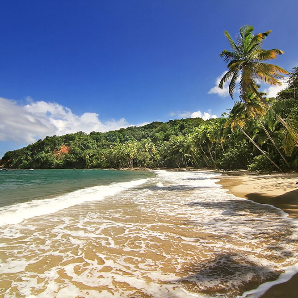 Beautifull beach in Dominica