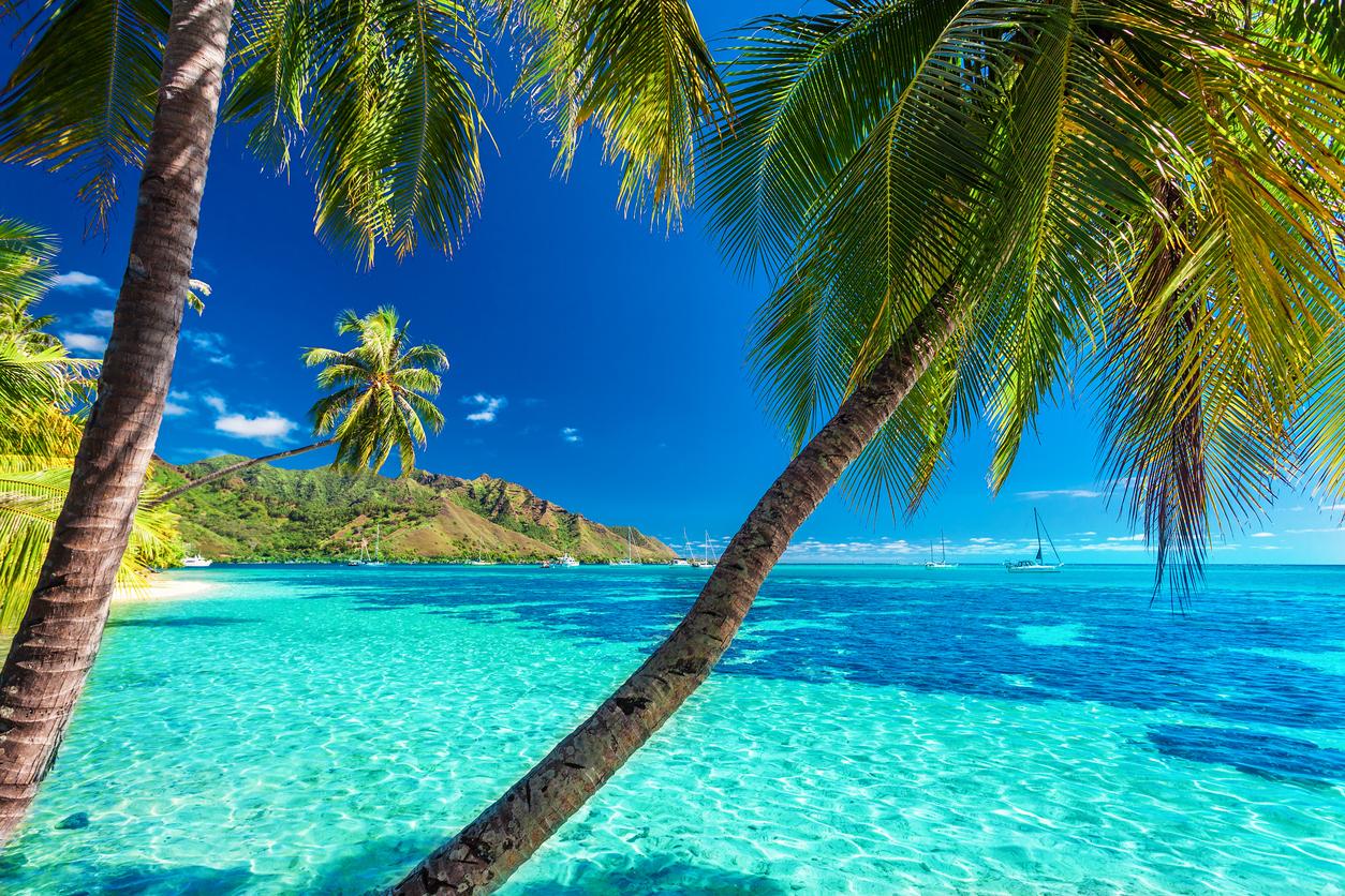 Beach Vacations In Bora Bora Best Beach Resorts In Tahiti