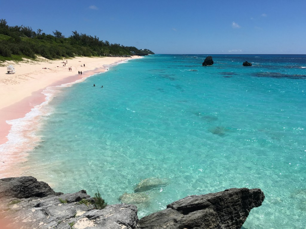 Perfect stretch of pink sand and blue water. Warwick Long Bay, Bermuda.