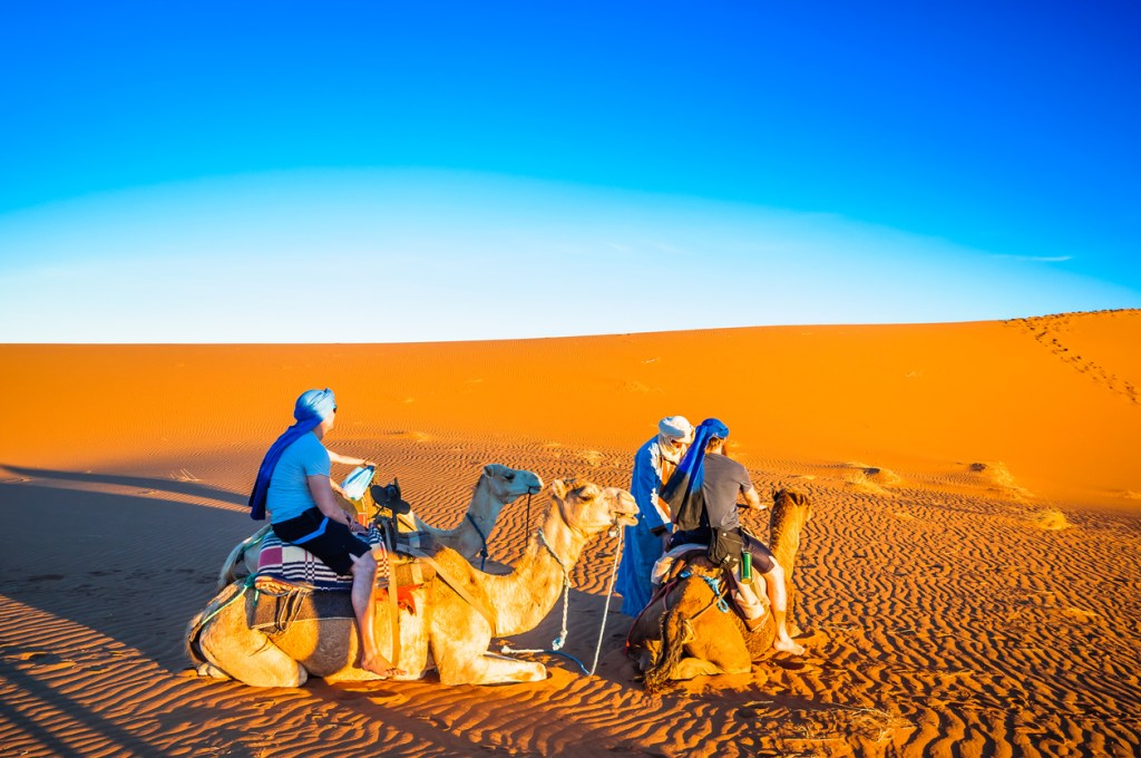 Camel trek in the desert of Morocco