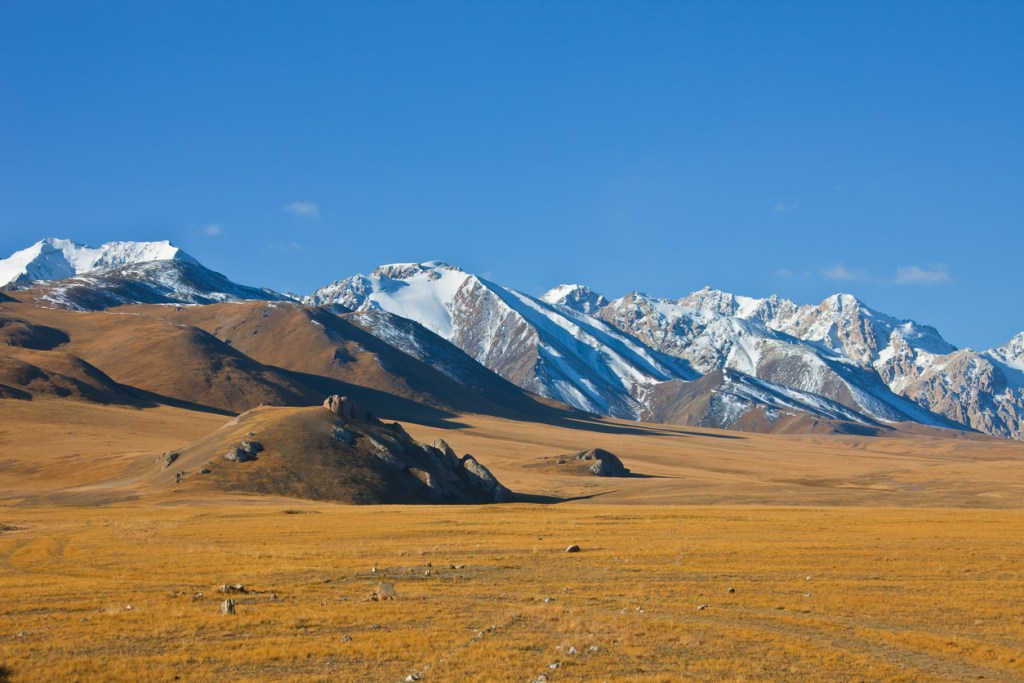 Mountain and steppe pastures in the Tien Shan