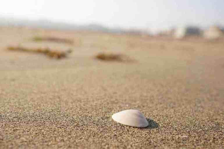 Zaimokuza Beach via Flickr