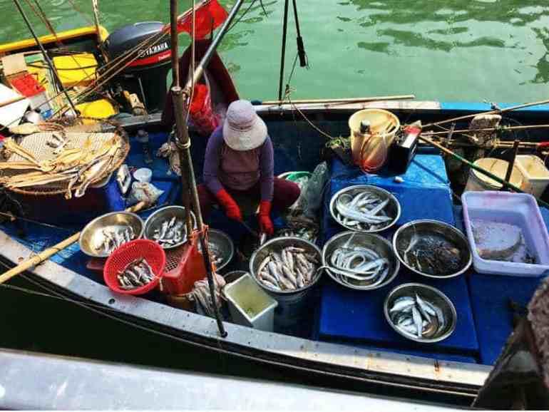 fishing village 36 hours hong kong by jeanne harran