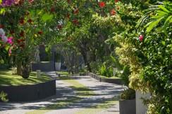 Villa Kailasha_0015_20-The Layar - Avenue