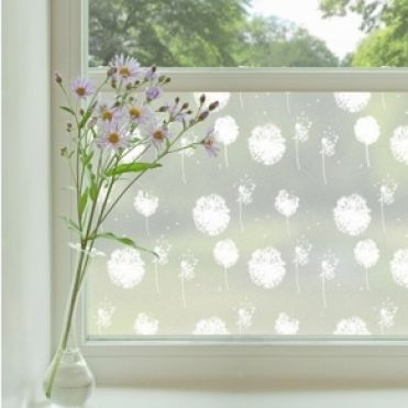 Crow And Roses 2 Privacy Decorative Window Film