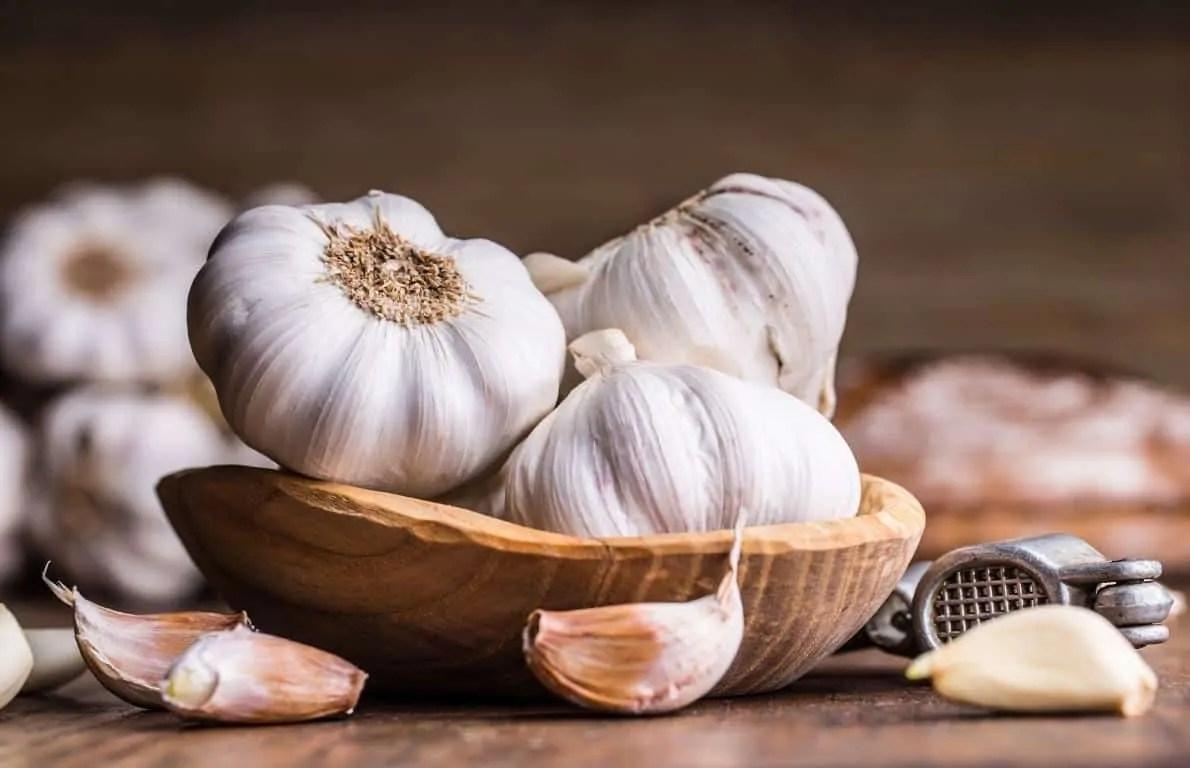 Garlic Nutrition And Health Benefits Puro Food