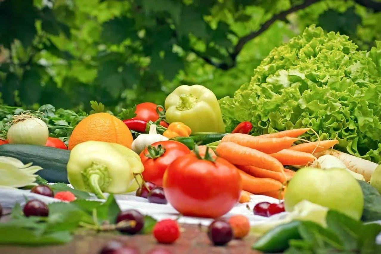 An Overview of ORGANIC FOOD PuroFood