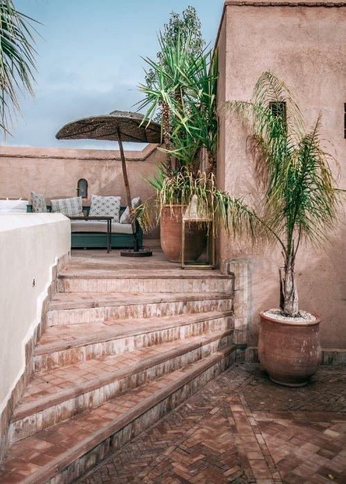 plantas terraza mediterranea