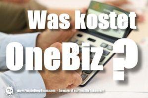 Was kostet OneBiz?