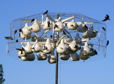 wire owl enclosure for purple martin gourd rack