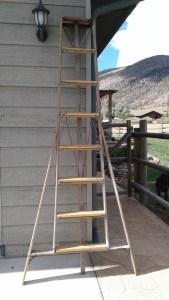 September 9, 2016 Find of the Week. Garage Sale. Orchard Ladder