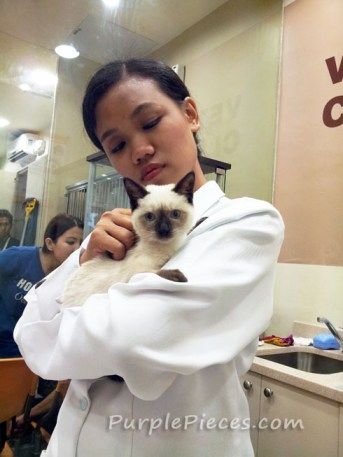Pet Express SM North EDSA