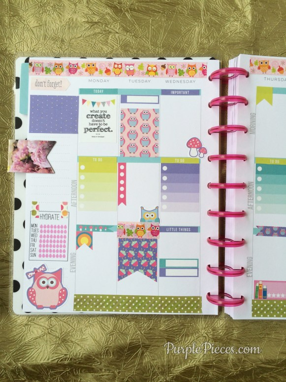 The Happy Planner Reviews