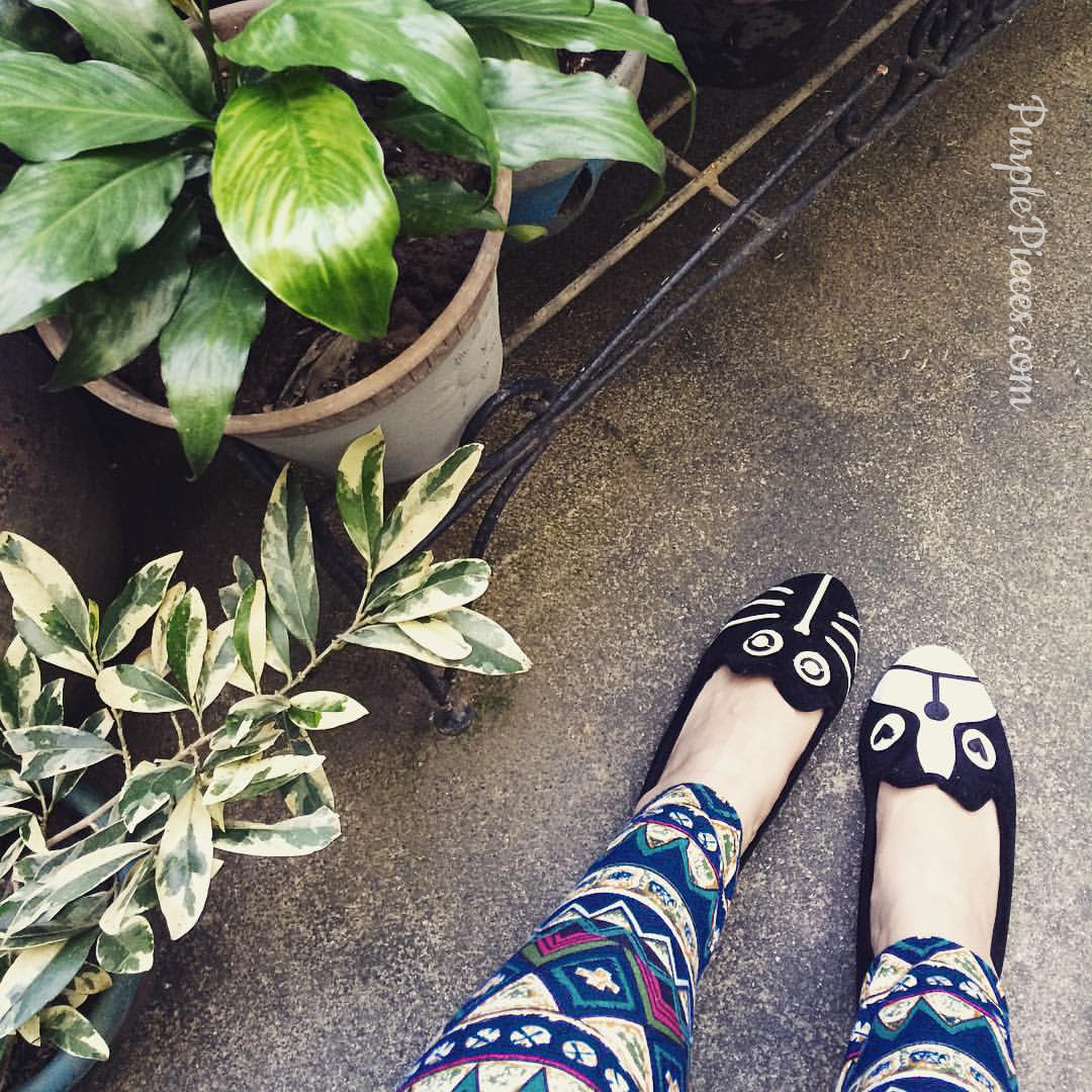 cat-dog-mismatch-shoes-sapatos-ph