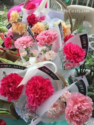 Cora Mina Carnations