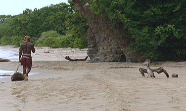 Pearl Islands Pete the Pelican taunts Osten